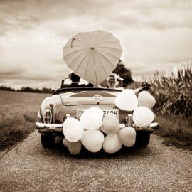 Hochzeit im Steigenhaus ♡